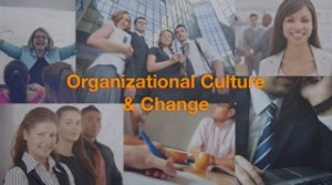Organizational Culture Change